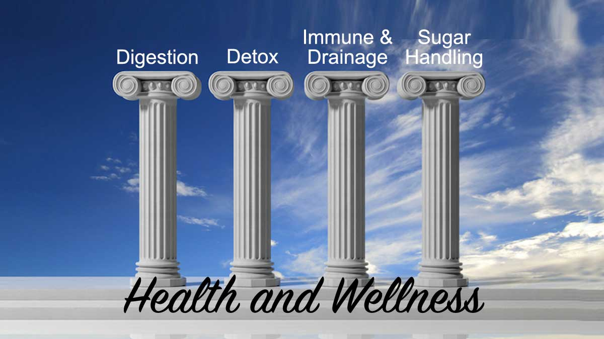 The Four Pillars of Health: Naturopathic Wellness Focus